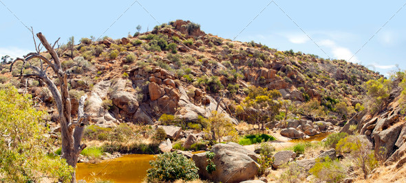 Australian Outback Oasis - Stock Photo - Images