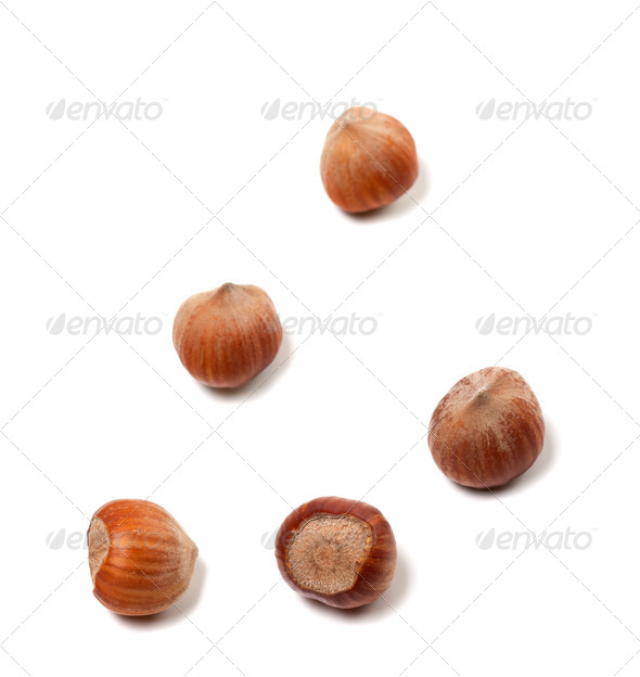 Brown hazelnuts on white - Stock Photo - Images