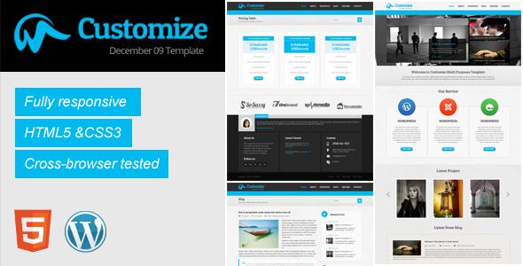 ThemeForest Customize Responsive Wordpress Theme 3931665