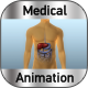 Human Liver - VideoHive Item for Sale