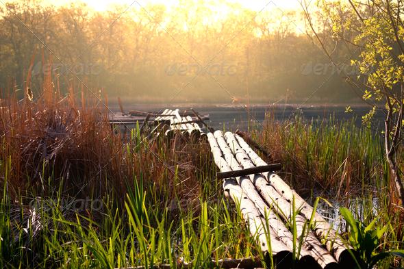 Lake - Stock Photo - Images