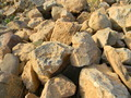 Rocks in yard - PhotoDune Item for Sale