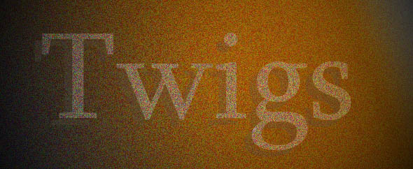 Twigs%20design%20banner%202