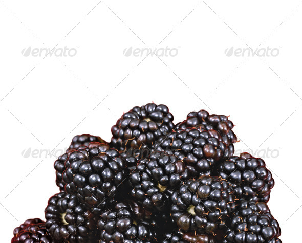 PhotoDune beautiful blackberries isolated on white 3963683