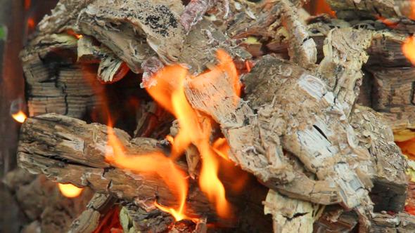 Bonfire 7