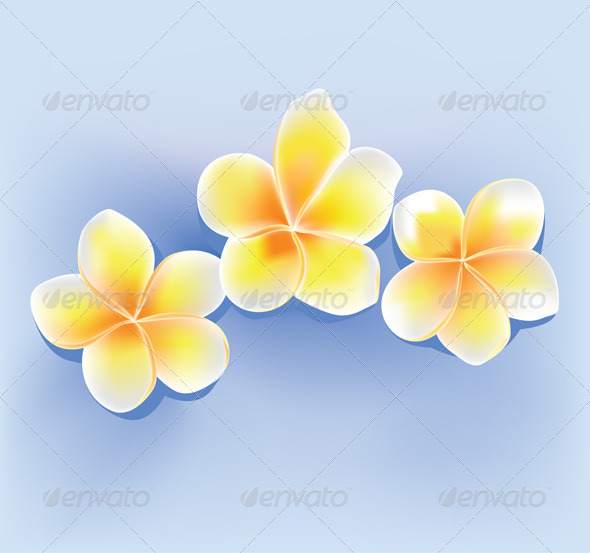 GraphicRiver Jepun Flower 3487287