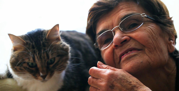 Old Woman And The Cat 2