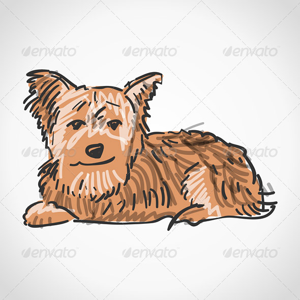 GraphicRiver Sitting Yorkshire Terrier 3964497