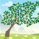Seasons Landscapes - GraphicRiver Item for Sale