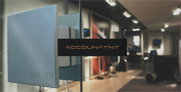CodeCanyon Accountant Store Accounting System 3969599