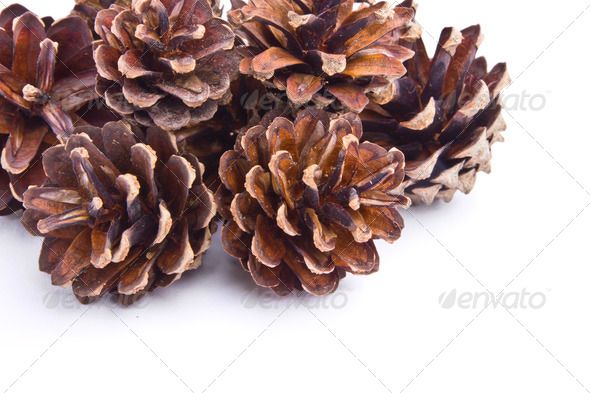PhotoDune Collection of cones isolated on white background 3969958