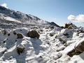 Snowfall landscape