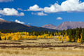 Colorado Mountain Landscape in Fall - PhotoDune Item for Sale