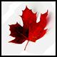 CanadaRocks
