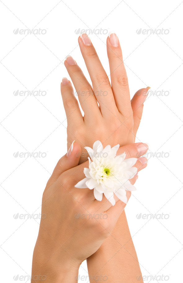 PhotoDune Beautiful female hands 3981020