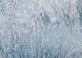 Frost on the window glass - PhotoDune Item for Sale