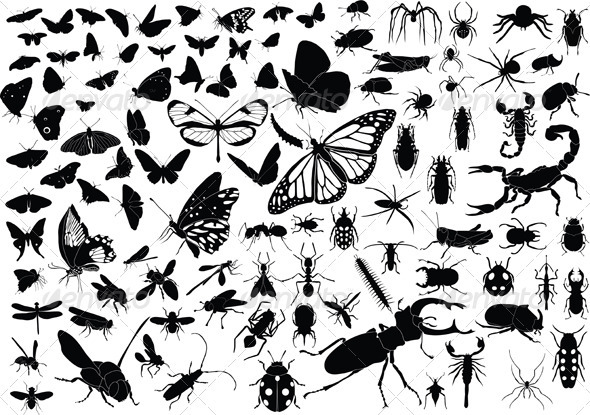GraphicRiver 100 Insects 3983901