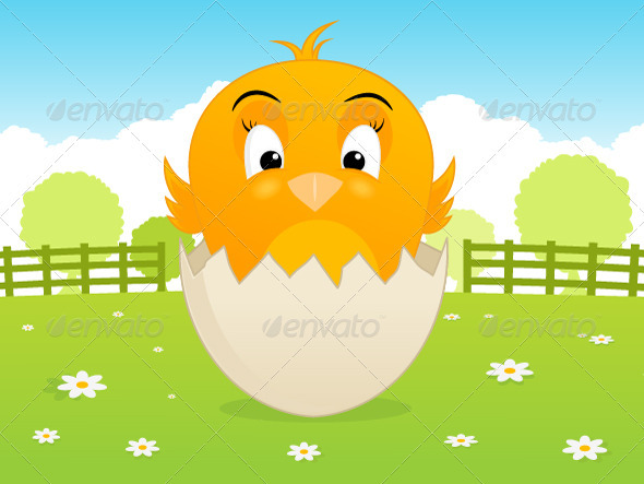 GraphicRiver Baby Chicken 3983918