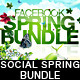 Social Spring Bundle FB Timeline & Twitter BG - GraphicRiver Item for Sale
