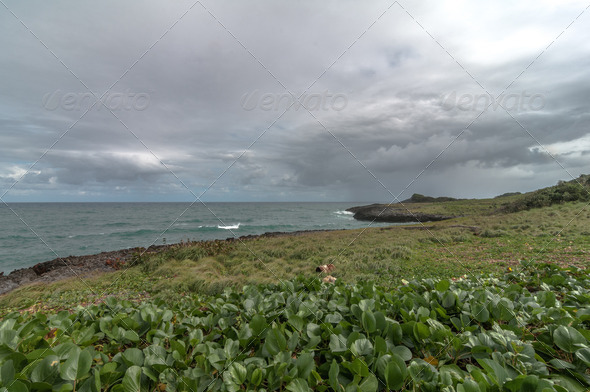 PhotoDune Caribbean Beach Clift 3986978