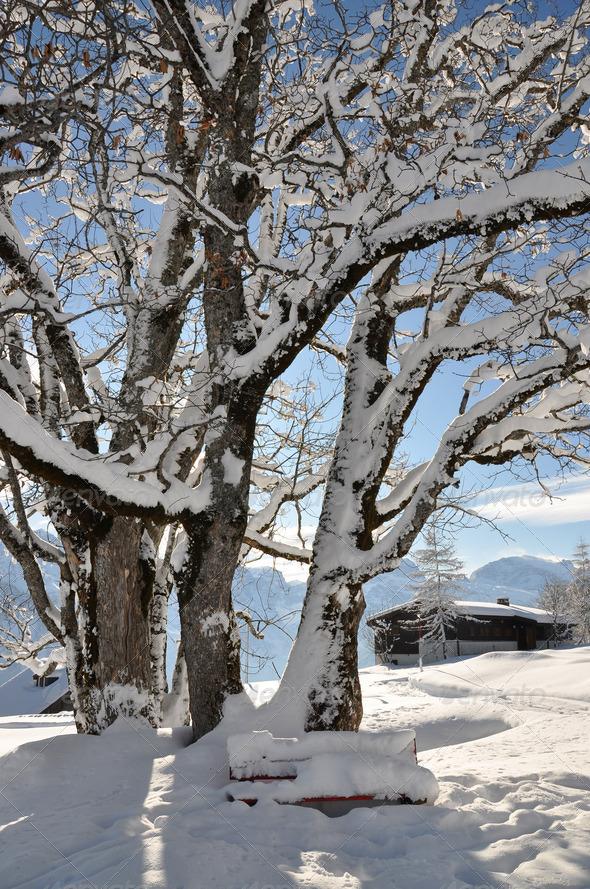 PhotoDune Alpine scenery Braunwald Switzerland 4001904