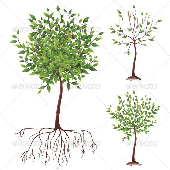 GraphicRiver Tree Icons 4008948