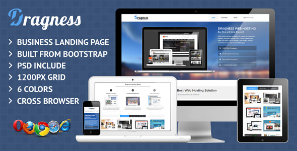 Dragness Business & Portfolio Landing Page