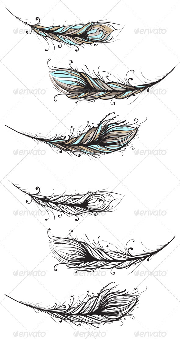 GraphicRiver Intricate Decorative Feathers Illustration 4020024