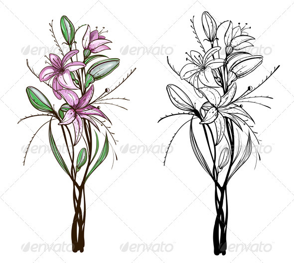 GraphicRiver Lily Flowers Illustration 4020029
