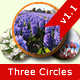 Three Circles
