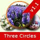 Three Circles - CodeCanyon Item for Sale