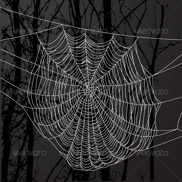 GraphicRiver Spider Web And Tree 4025782