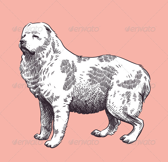 GraphicRiver Dog Shepherd Caucasian Mid-Asian Vector 4028028
