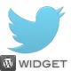 Tweet Feed Wordpress Twitter Timeline Widget - CodeCanyon Item for Sale