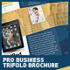 Pro Business Trifold Brochure PSD Template - GraphicRiver Item for Sale
