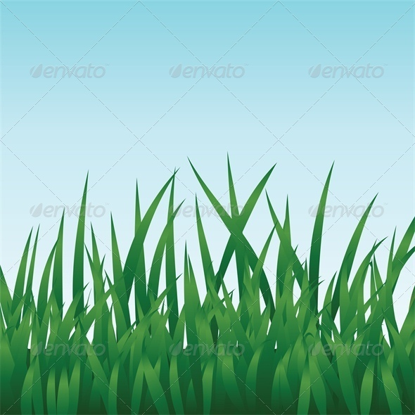 GraphicRiver Green Grass and Blue Sky 4043133