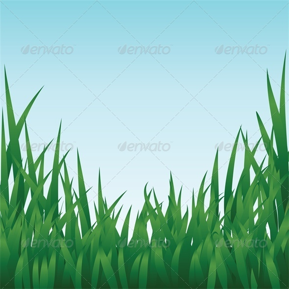 GraphicRiver Green Grass and Blue Sky 4043141