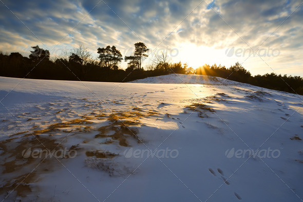 PhotoDune snowy hill at sunset 4102057