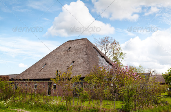 PhotoDune typical Dutch farm house 4102066