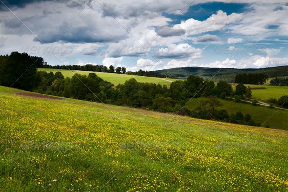 PhotoDune summer flowering meadows in mountains 4102268