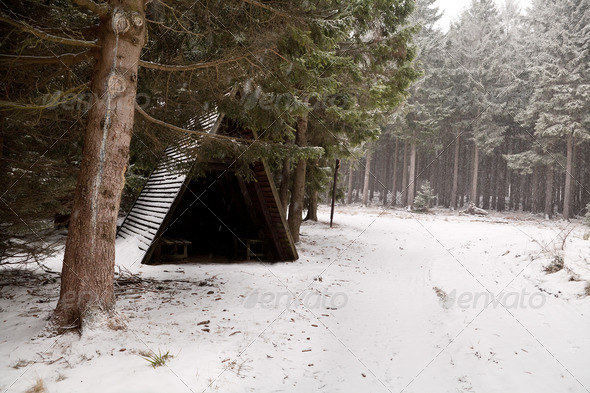 PhotoDune wooden hut in forest during snowfall 4102273