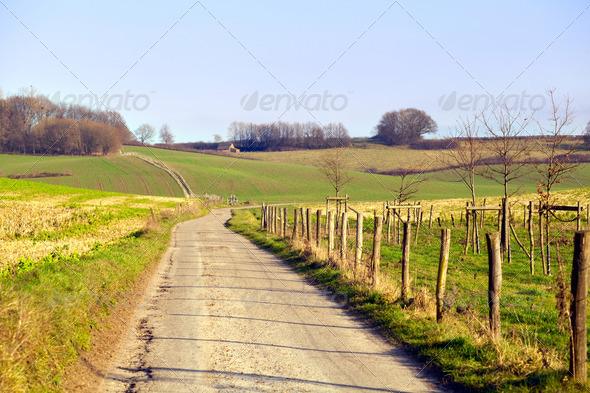 PhotoDune rural road in Limburg 4102281