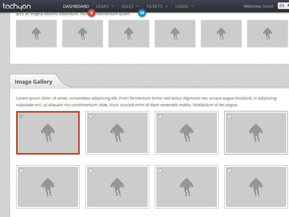 Tachyon HTML5 Admin Template - Tachyon gallery styles