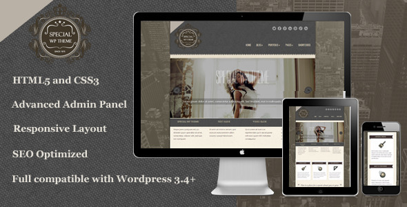 ThemeForest Special Responsive WordPress Theme 3829440
