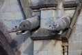 Armadillo gargoyles of the Basilica of the national vow, Quito, Ecuador - PhotoDune Item for Sale