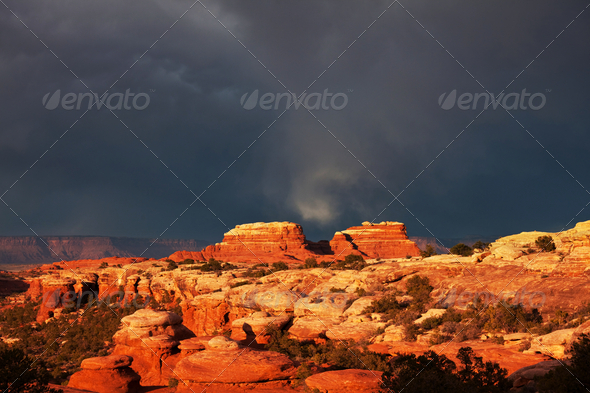 Canyonlands - Stock Photo - Images