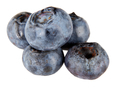 Group of fresh blueberries - PhotoDune Item for Sale