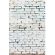 Vintage white background brickwall