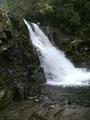 Abrams Falls - PhotoDune Item for Sale