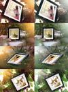 06_examples.__thumbnail